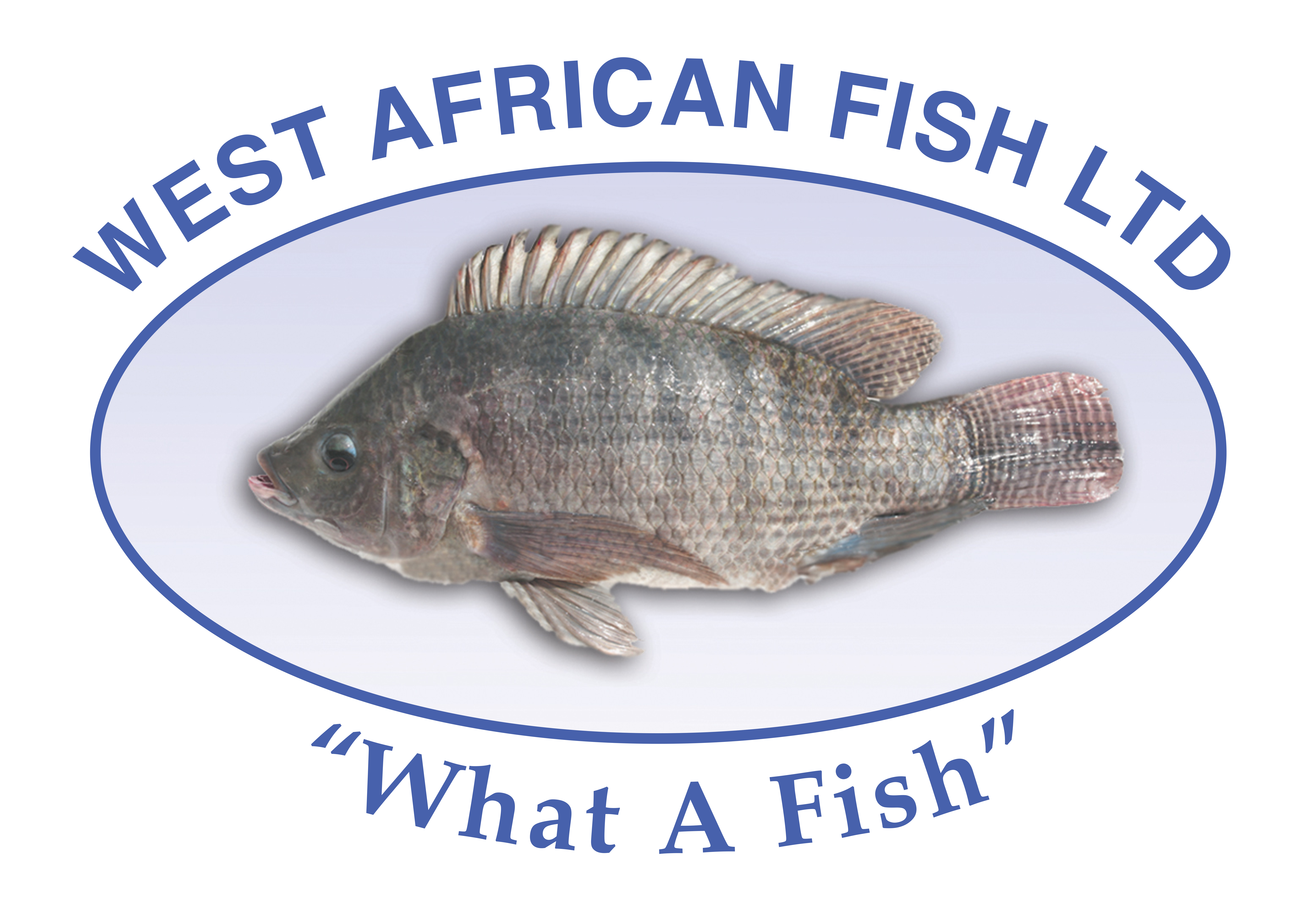 West African Fish